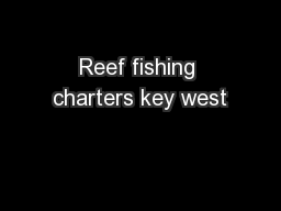 Reef fishing charters key west