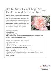 tasks for digital photographers. Paint Shop Pro