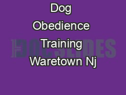 Dog Obedience Training Waretown Nj