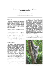Conservation of the Silvery (Javan) Gibbon  (Hylobates moloch)  Karen
