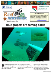 The last Reef Watcher