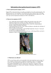 Information about guttural pouch tympany (GPT)